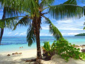 Voordelig naar de Seychellen op vakantie