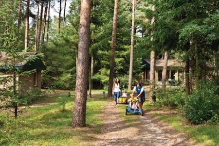 Vakantiepark Landal Coldenhove in Gelderland